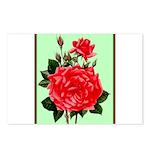 Red, Red Roses Vintage Print Postcards (Package of