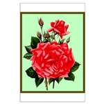 Red, Red Roses Vintage Print Poster
