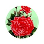 Red, Red Roses Vintage Print Button