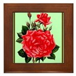 Red, Red Roses Vintage Print Framed Tile