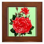 Red, Red Roses Vintage Print Framed Tile