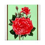 Red, Red Roses Vintage Print Queen Duvet