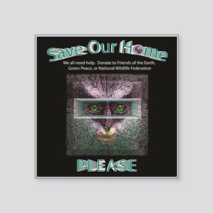 Save Our Home: Magnets, Hats Sticker