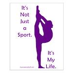 Gymnastics Poster 14 x 20