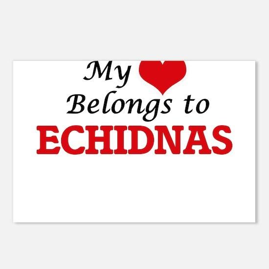 My heart belongs to Echid Postcards (Package of 8)