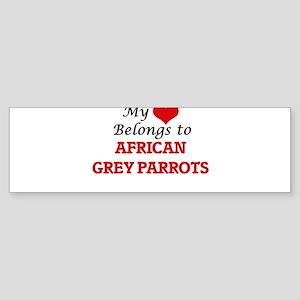 My heart belongs to African Grey Pa Bumper Sticker