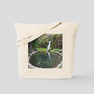 Hiidden Waterfall Tote Bag