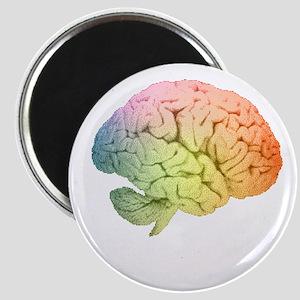 Celebrate Neurodiversity Magnets