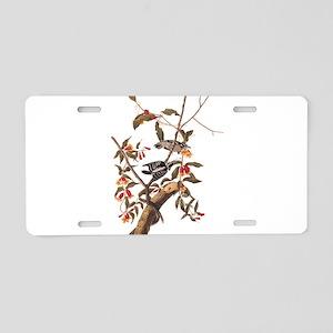 Downy Woodpecker Vintage Audubon Art Aluminum Lice