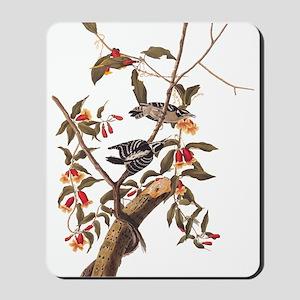 Downy Woodpecker Vintage Audubon Art Mousepad