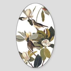Warbling Flycatcher Bird Vintage Audubon Art Stick