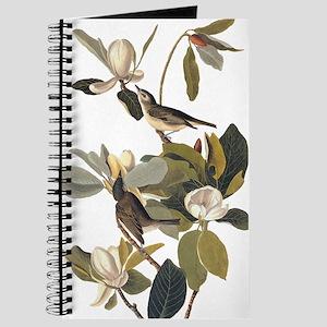 Warbling Flycatcher Bird Vintage Audubon Art Journ