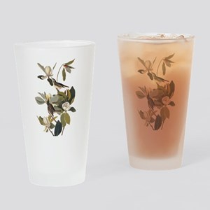 Warbling Flycatcher Bird Vintage Audubon Art Drink