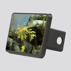 Leafy Sea Dragon with Rocks Hitch Cover