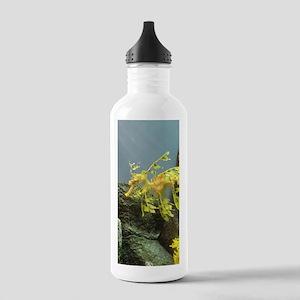 Leafy Sea Dragon with Rocks Water Bottle