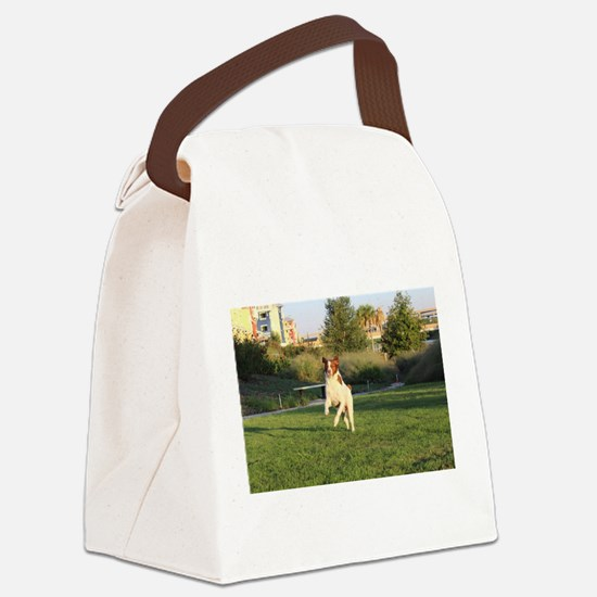 Leaping Brittany Spaniel Canvas Lunch Bag