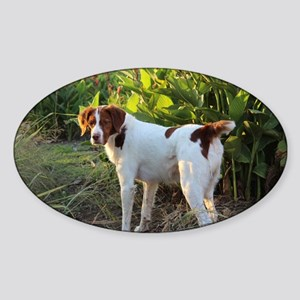 Tropical Pointing Brittany Sticker