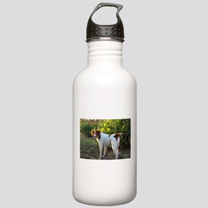 Tropical Pointing Brit Stainless Water Bottle 1.0L