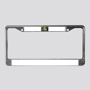 Tropical Pointing Brittany License Plate Frame