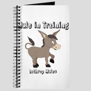 Mule in Training Journal