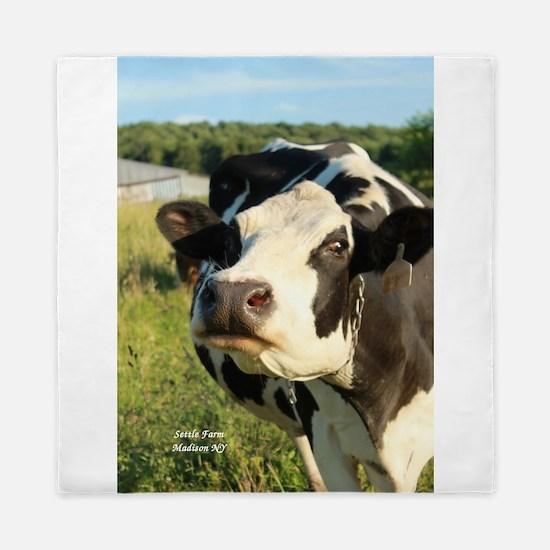 curious cow, 2 Queen Duvet