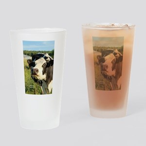 curious cow, 2 Drinking Glass