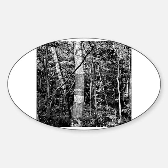 Cute Scenery Sticker (Oval)