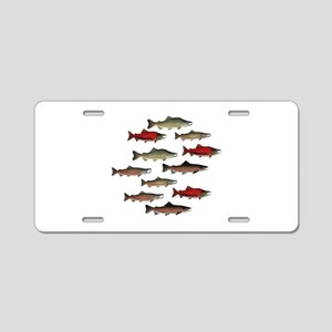 SCHOOLS Aluminum License Plate