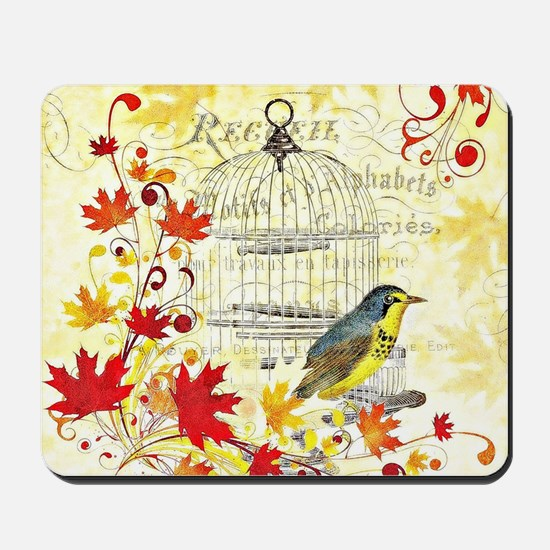 Autumn birdcage Mousepad
