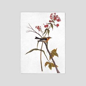 Blackburnian Warbler Bird Vintage Audubon Art 5'x7
