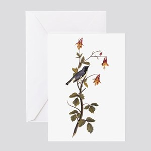 Black Throated Blue Warbler Vintage Audubon Greeti