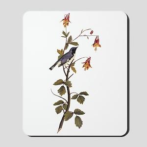 Black Throated Blue Warbler Vintage Audubon Mousep