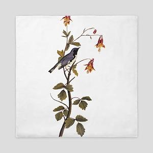 Black Throated Blue Warbler Vintage Audubon Queen