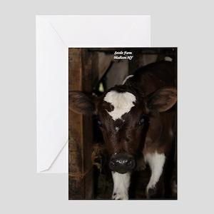 baby calf Greeting Cards