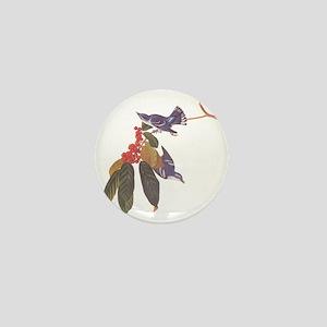 Cerulean Warbler Vintage Audubon Birds Mini Button