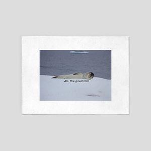 """Lazy Beach Bum Seal: """"Ah, the good 5'x7'Area Rug"""