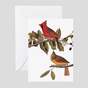 Cardinal Grosbeak Vintage Audubon Birds Greeting C