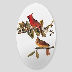 Cardinal Grosbeak Vintage Audubon Birds Sticker