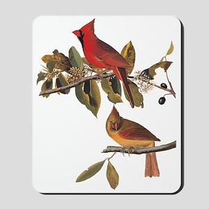 Cardinal Grosbeak Vintage Audubon Birds Mousepad