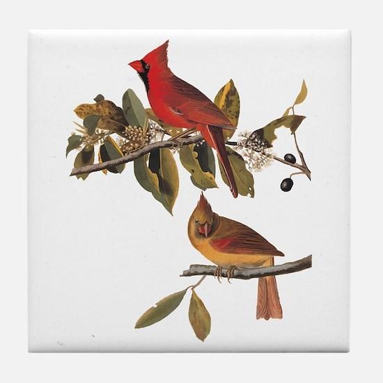 Cardinal Grosbeak Vintage Audubon Birds Tile Coast