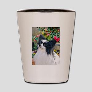 Papillon dog Shot Glass