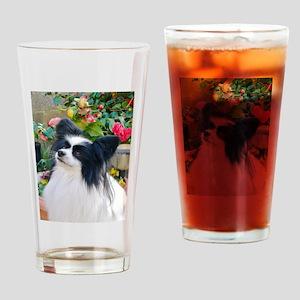 Papillon dog Drinking Glass