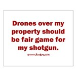 Drones R Fair Game Small Poster
