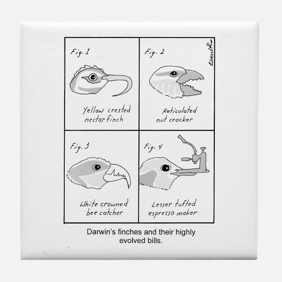 Darwin's Finches Tile Coaster