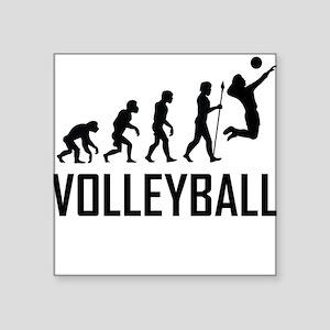 Volleyball Evolution Sticker