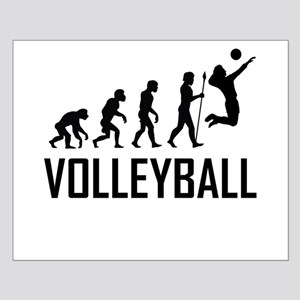 Volleyball Evolution Posters