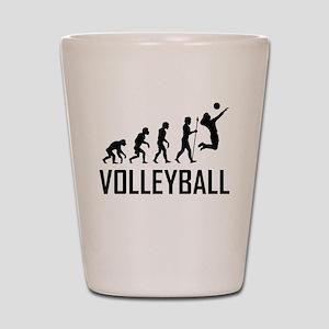 Volleyball Evolution Shot Glass
