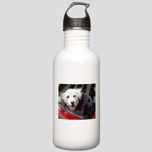 Dog Smile Stainless Water Bottle 1.0L