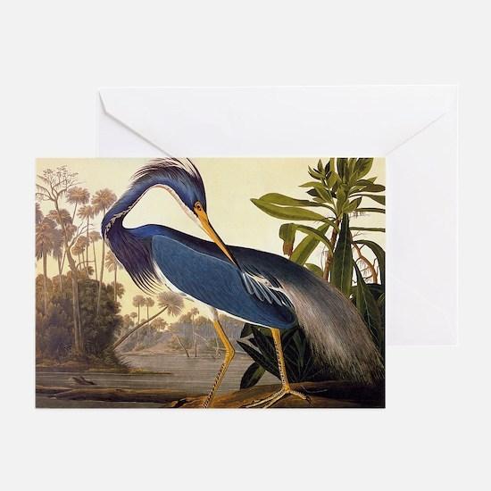 Louisiana Heron Vintage Audubon Bird Greeting Card