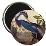 Audubon Magnets
